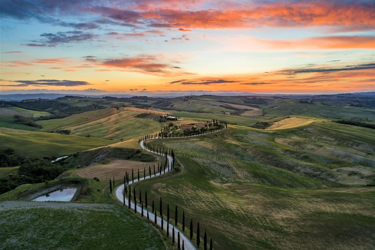 Tuscany Italy Vineyard