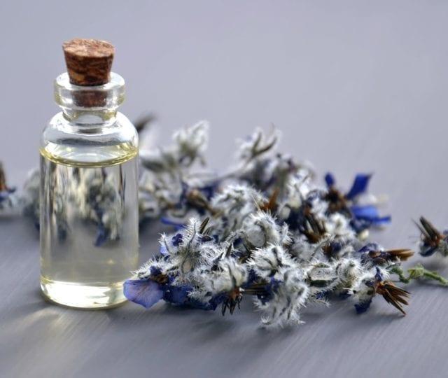 Summer Fragrances For Men